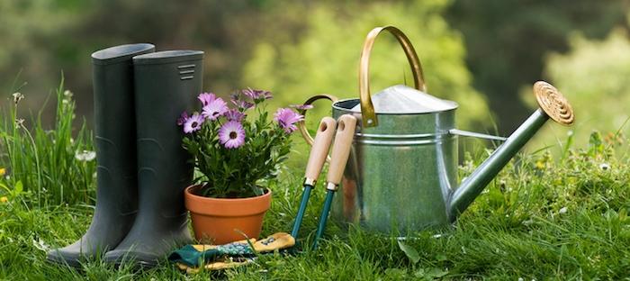 Effective Garden Tips That You Can Follow